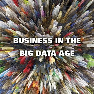 Business in the Big Data Age
